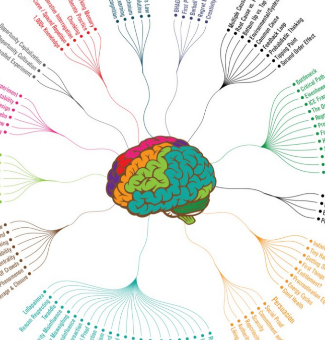 12 Ways to Get Smarter in One Infographic