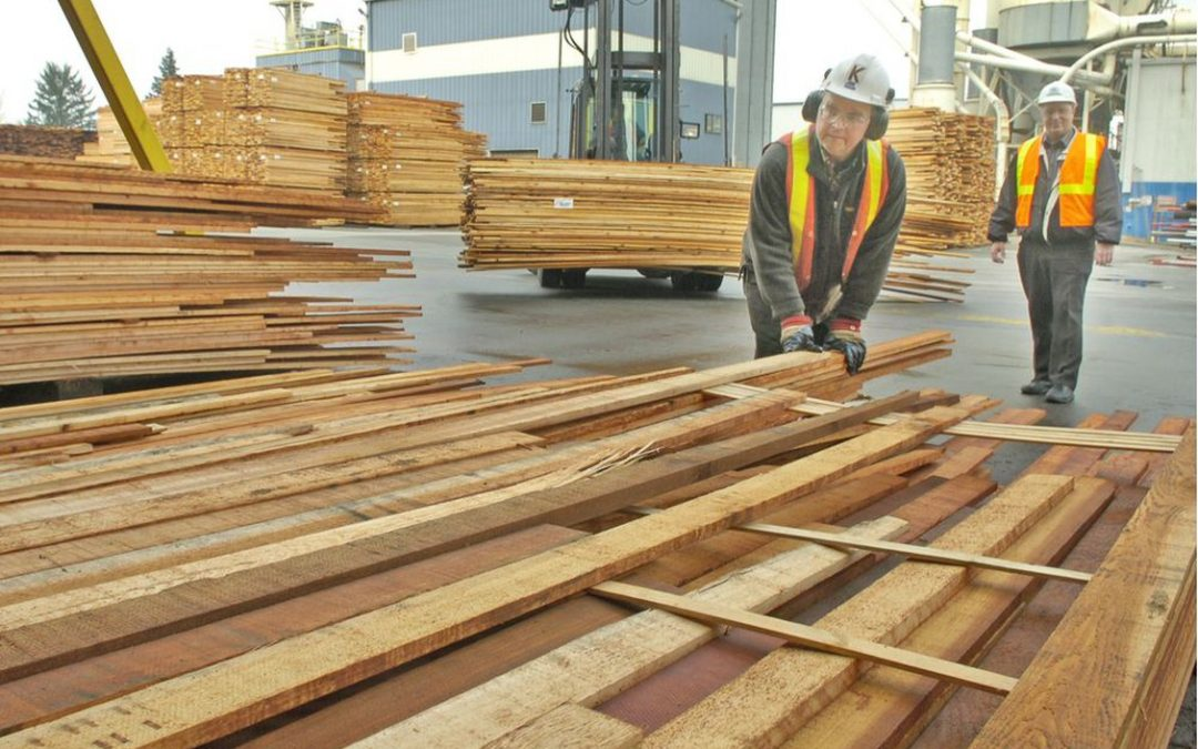 Expensive lumber makes a return amid supply cuts, labour shortages